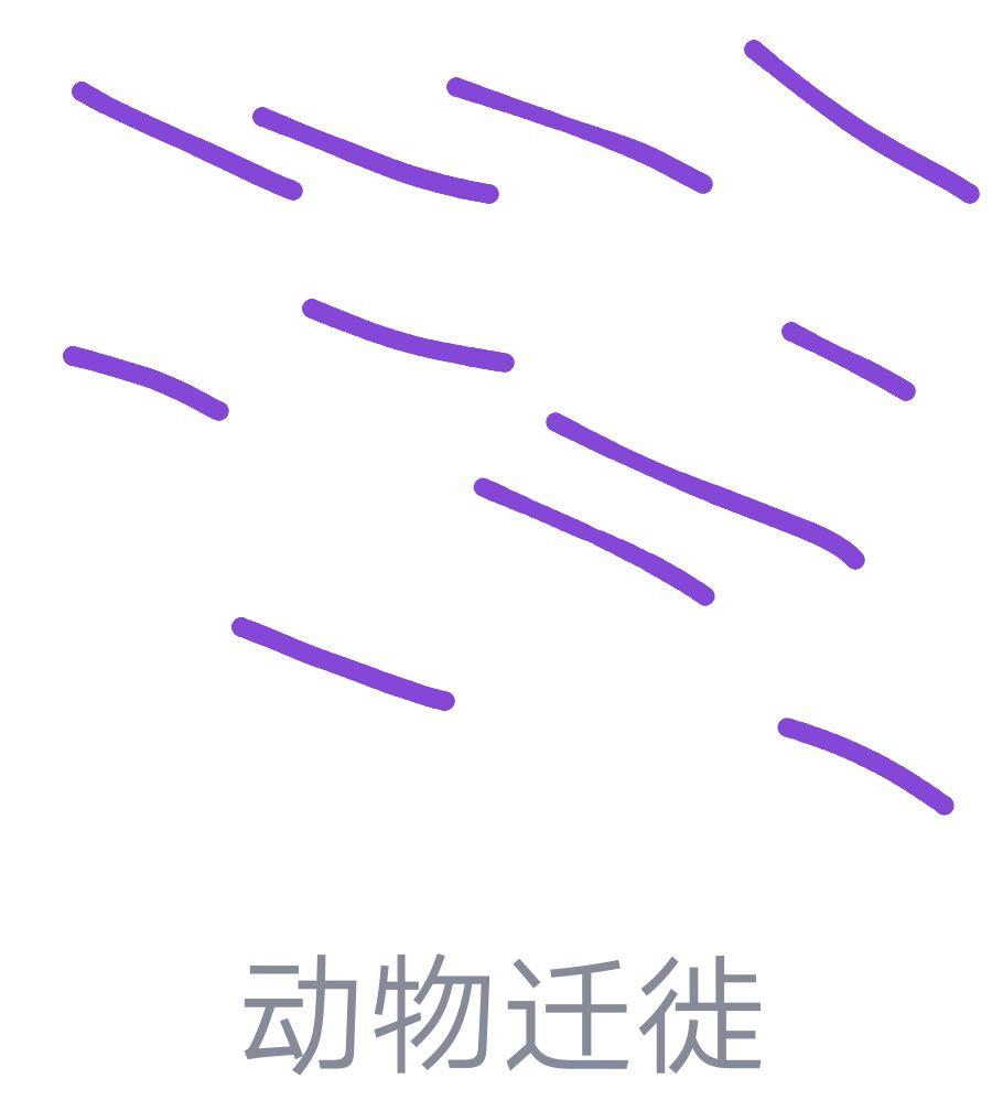 QQ画图红包动物迁移怎么画